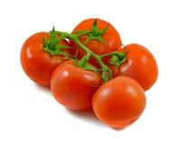 Tomaten die op witte achtergrond worden geïsoleerde stock foto's
