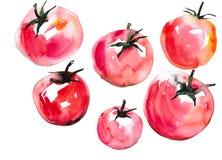 Tomaten die op witte achtergrond worden geïsoleerde Stock Fotografie