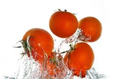 Tomaten die uit het water springen Stock Afbeelding