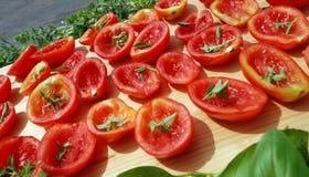 Tomaten die in zon drogen stock fotografie