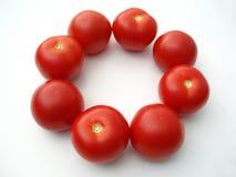 Tomaten in een cirkel stock afbeelding