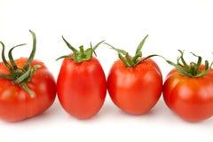 Tomaten in een Rij Stock Afbeelding