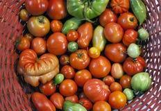 Tomaten in een rode mand Stock Fotografie