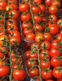 Tomaten in een straatmarkt royalty-vrije stock foto's