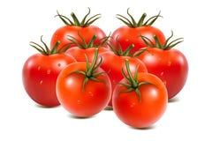 Tomaten ein auf Weiß Lizenzfreie Stockfotos