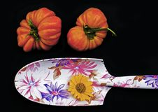 Tomaten eine Gartenarbeitschaufel lizenzfreies stockbild