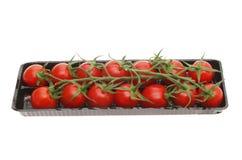 Tomaten in einem Karton Stockbild