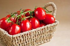 Tomaten in einem Korb Lizenzfreies Stockbild