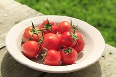 Tomaten in einer Platte auf einem hölzernen Hintergrund Stockfotografie