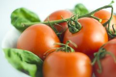 Tomaten in einer weißen Platte und in einem Hintergrund Stockfoto