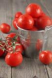 Tomaten in emmer Royalty-vrije Stock Foto's