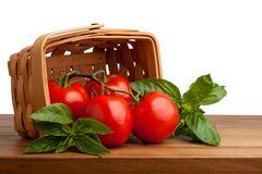 Tomaten en Basilicum Stock Afbeelding