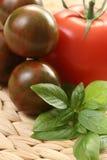 Tomaten en basilicum Royalty-vrije Stock Afbeeldingen