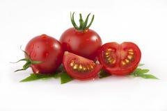 Tomaten en bladeren Stock Afbeeldingen