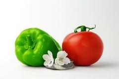 Tomaten en Groene paprika Royalty-vrije Stock Foto