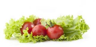Tomaten en groene saladebladeren Royalty-vrije Stock Afbeeldingen