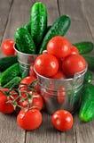 Tomaten en komkommers in emmers Stock Foto