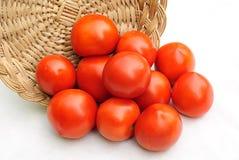 Tomaten en mand Stock Fotografie