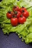 Tomaten en salade Stock Afbeeldingen