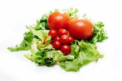 Tomaten en salade Stock Foto