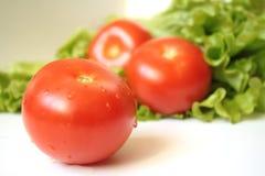 Tomaten en saladebladeren op een witte achtergrond royalty-vrije stock afbeelding