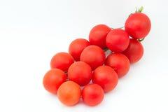 Tomaten förgrena sig Arkivfoton