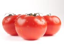 Tomaten gespritzt mit Wasser Stockfotos