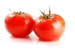 Tomaten getrennt auf Weiß Stockbilder