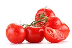 Tomaten getrennt auf Weiß Stockbild