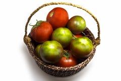 Tomaten Grün und Rot Lizenzfreie Stockfotografie