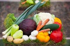 Tomaten, groene paprika's, wortelen en groenten Stock Fotografie