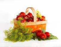 Tomaten im Korb, Grüns Lizenzfreie Stockbilder