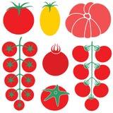 Tomaten-Kirsche Lizenzfreies Stockbild