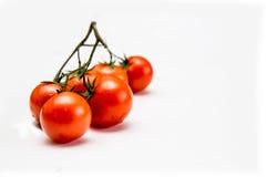 Tomaten klein en ronde Pachino Royalty-vrije Stock Foto