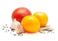 Tomaten, knoflook, laurierblad, koriander en peper Stock Foto