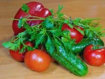 Tomaten, komkommers, groene paprika's en greens royalty-vrije stock foto