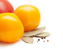 Tomaten, laurierblad, koriander en peper Stock Afbeeldingen