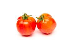 Tomaten lokalisiert auf Weiß Stockfoto