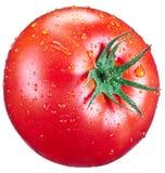 Tomaten med bevattnar tappar Arkivbilder