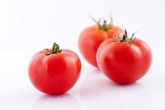 Tomaten met dalingen van water Royalty-vrije Stock Fotografie