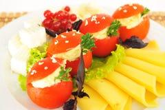 Tomaten met kaas worden gevuld die. Royalty-vrije Stock Foto's