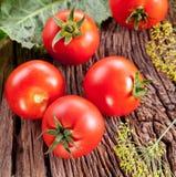 Tomaten, met kruiden voor het behoud worden gekookt dat stock afbeeldingen