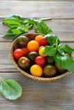 Tomaten mit Basilikum in einem Weidenkorb Stockbilder