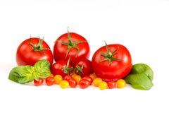 Tomaten mit Basilikumblättern auf weißem Hintergrund Lizenzfreie Stockfotografie
