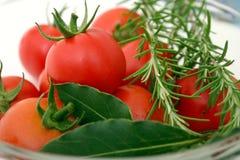 Tomaten mit Gewürzen Lizenzfreie Stockfotografie