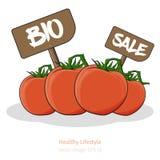 Tomaten mit Karikaturblick mit Zeichen Lizenzfreie Stockfotos