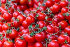 Tomaten op bank in openbare markt Royalty-vrije Stock Fotografie