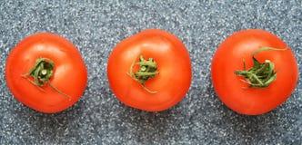 Tomaten op grijze achtergrond royalty-vrije stock fotografie