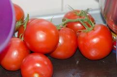 Tomaten op keukenteller Stock Foto's