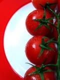 tomaten op rode plaat Royalty-vrije Stock Foto